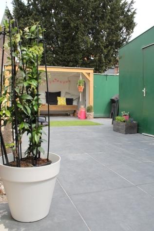 ingebruins-tuin-jasmijnplant