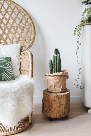 ingebruins-annetweelink-cactus behang11